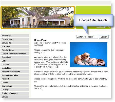 2009-04-30 - Site Search